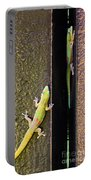 Gold Dusted Day Gecko Portable Battery Charger
