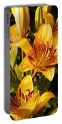 Gold Lilly Portable Battery Charger