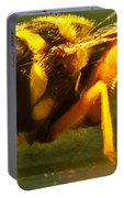 Gold Syrphid Fly Portable Battery Charger