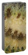 Golden Barrel Cactus Portable Battery Charger