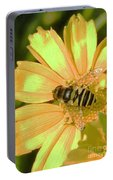 Golden Bee Portable Battery Charger