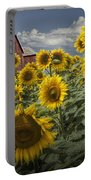 Golden Blooming Sunflowers With Red Barn Portable Battery Charger