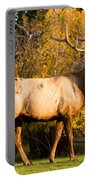 Golden Bull Elk Portrait Portable Battery Charger