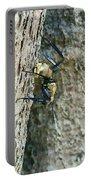 Golden Carpenter Ant  Portable Battery Charger