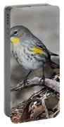 Golden Cheeked Warbler Portable Battery Charger