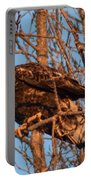 Golden Eagle Liftoff Portable Battery Charger