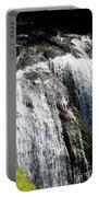 Golden Falls, Oregon Portable Battery Charger