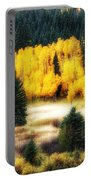 Golden Glow Portable Battery Charger
