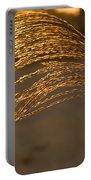 Golden Grass Portable Battery Charger