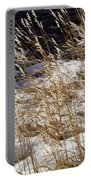 Golden Grasses In Sun And Snow Portable Battery Charger