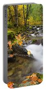 Golden Grove Portable Battery Charger