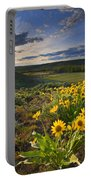 Golden Hills Portable Battery Charger