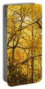Golden Light Portable Battery Charger