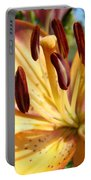 Golden Lily Flower Orange Brown Lilies Art Prints Baslee Troutman Portable Battery Charger