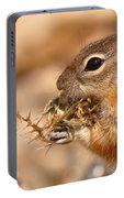 Golden-mantled Ground Squirrel Eating Prickly Spine Portable Battery Charger