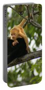Golden Monkey Portable Battery Charger