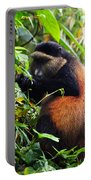 Golden Monkey II Portable Battery Charger