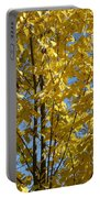 Golden October Portable Battery Charger