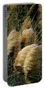 Golden Pampas In The Wind Portable Battery Charger
