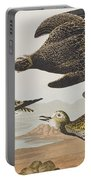 Golden Plover Portable Battery Charger