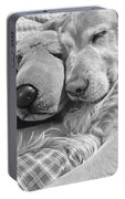 Golden Retriever Dog And Friend Portable Battery Charger