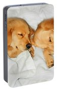 Golden Retriever Dog Puppies Sleeping Portable Battery Charger