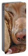Golden Retriever Dog Santa Hat And Friend Portable Battery Charger