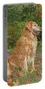 Golden Retriever Dogs In Autumn Portable Battery Charger