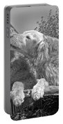 Golden Retrievers The Kiss Black And White Portable Battery Charger