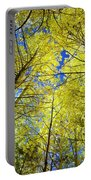 Golden Sky Portable Battery Charger