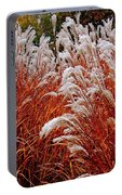 Golden Snow Portable Battery Charger