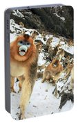 Golden Snub-nosed Monkey Portable Battery Charger