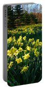 Golden Spring Carpet Portable Battery Charger