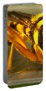 Golden Syrphid Portable Battery Charger