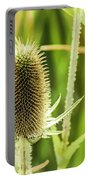 Golden Thistles Portable Battery Charger