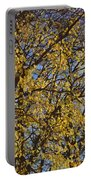 Golden Tree 3 Portable Battery Charger