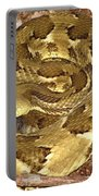 Golden Viper Portable Battery Charger
