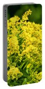 Goldenrod Portable Battery Charger