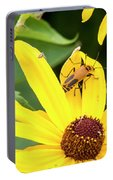 Goldenrod Soldier Beetle Portable Battery Charger