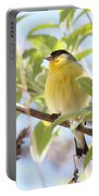 Goldfinch In Spring Tree Portable Battery Charger