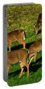 Good Morning Deer Portable Battery Charger