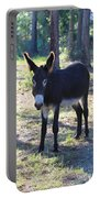 Good Morning Mule Portable Battery Charger
