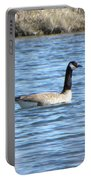 Goose Portable Battery Charger