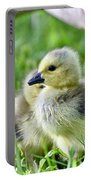 Goose Chick Portable Battery Charger