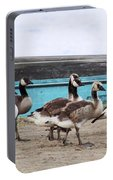 Goose Crossing Mayville Park Portable Battery Charger