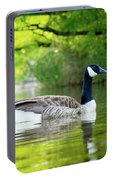 Goose Lake Portable Battery Charger