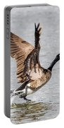 Goose Takeoff Portable Battery Charger