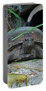 Gopher Tortoise II Portable Battery Charger