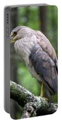 Gorgeous Bird Portable Battery Charger