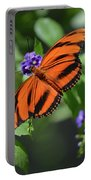 Gorgeous Close Up Of An Oak Tiger Butterfly In Nature Portable Battery Charger